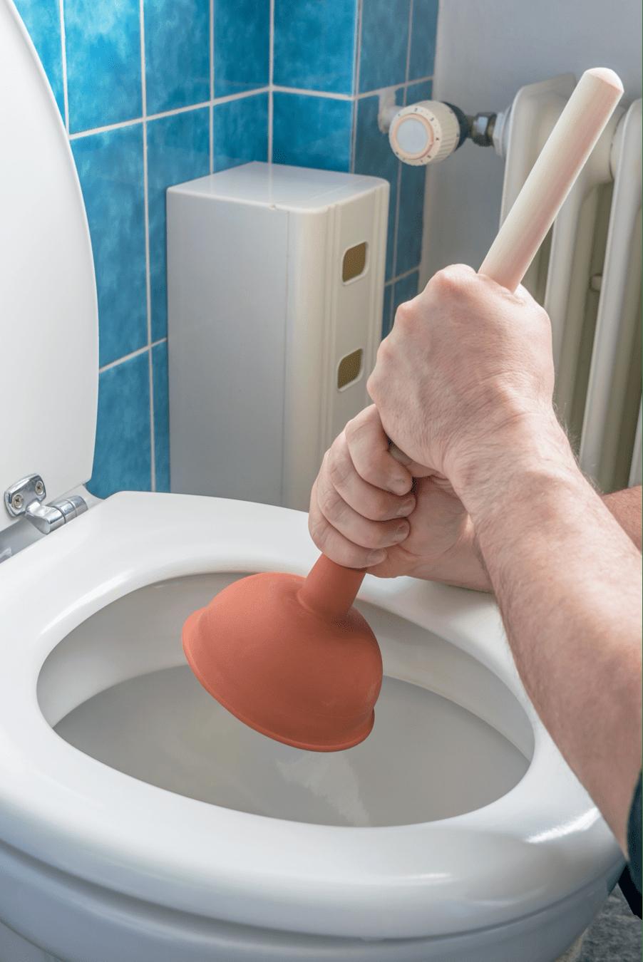 plumber-cape-town-plunger-toilet -min